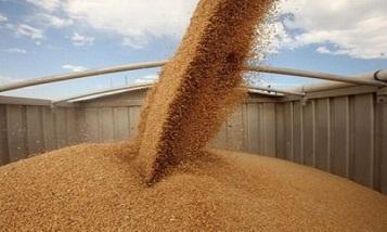 Тариф на перевозку зерновых по железной дороге из Поти в Армению снизится вдвое